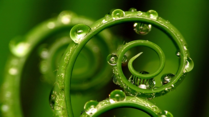 Don't be Green With Envy – Diversify Your Brand'sColor