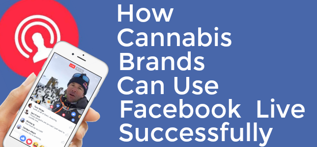 How Cannabis Brands Can Jump on the Facebook LiveExperience