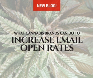 What Cannabis Brands Can Do To Increase Email Open Rates
