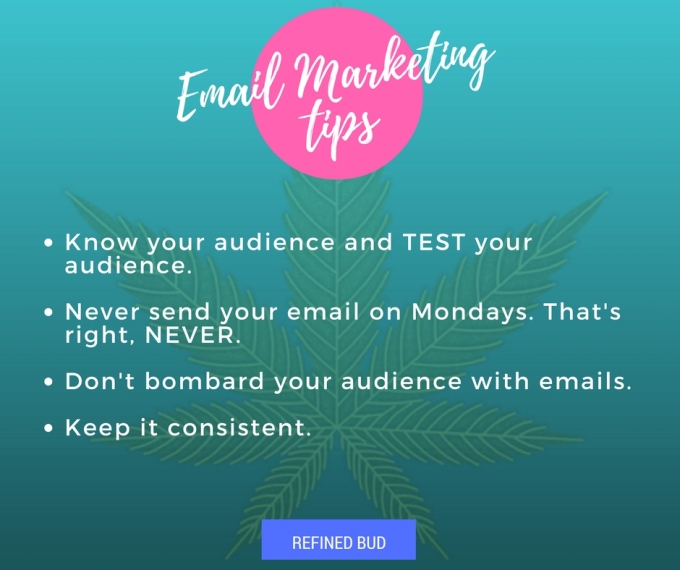 best email marketing tips image for cannabis brands