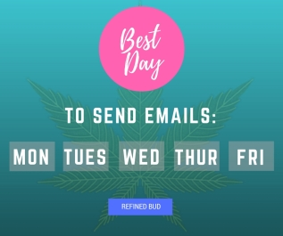 Perfect Timing: When To Hit Send On Marketing Email