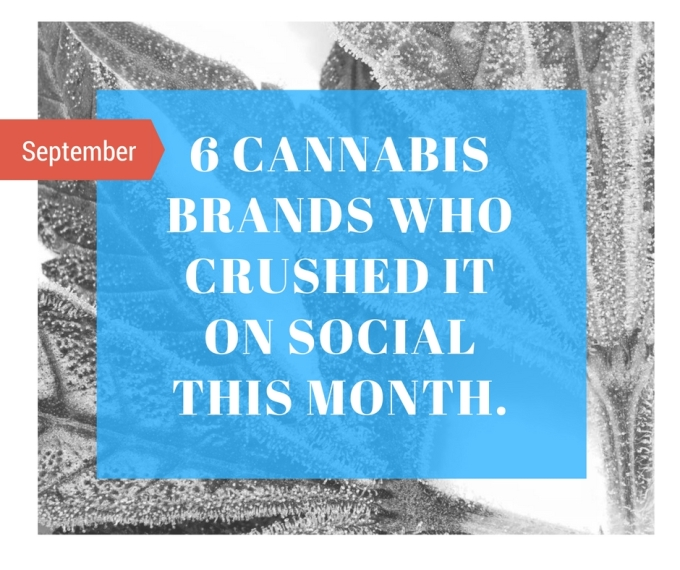Six Cannabis Companies Who Crushed it on Social Media – September2016