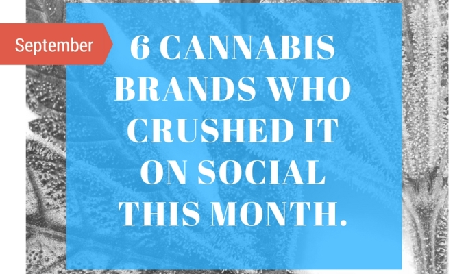 Six Cannabis Companies Who Crushed it on Social Media – September 2016