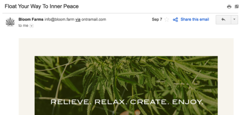 best subject line we've seen - Float Your Way to Inner Peace